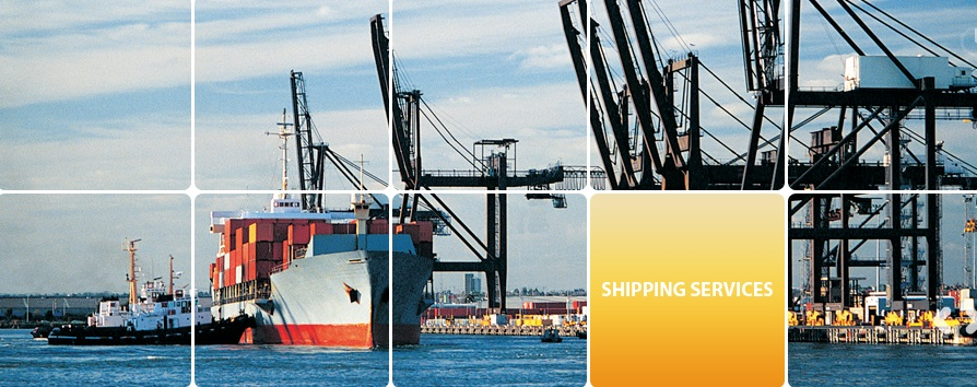 Blue Fin International Shipping LLC - Freight Forwarding - - Dubai
