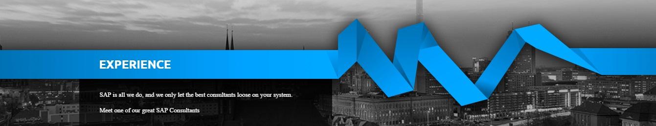 Invenio Business Solutions DWC - LLC - Software Development - Dubai