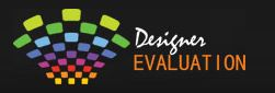 Designer Evaluation