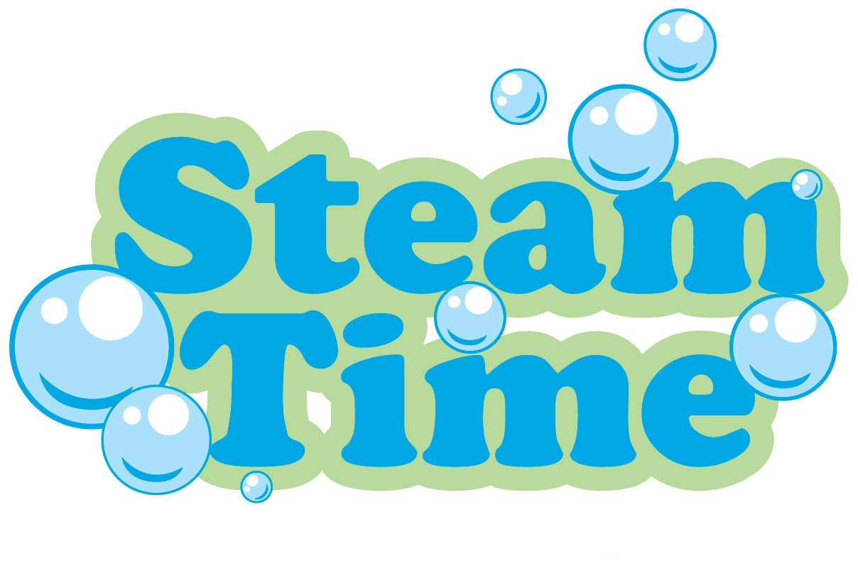 Steam Time Cleaning Services