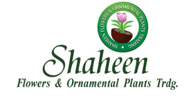 Shaheen Flowers and Ornamental Plants Trading LLC Logo